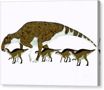 Brachylophosaurus Side Profile Canvas Print by Corey Ford