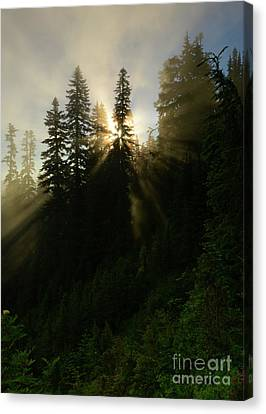 Breaking Dawn Canvas Print