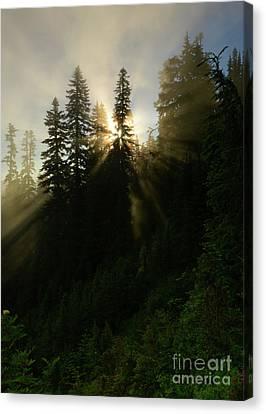 Breaking Dawn Canvas Print by Mike Dawson