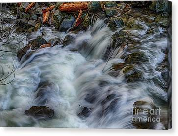 Canvas Print - Bridalveil Creek In Yosemite by Terry Garvin