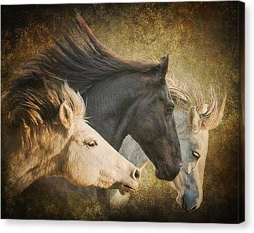 Brings The Thunder Canvas Print
