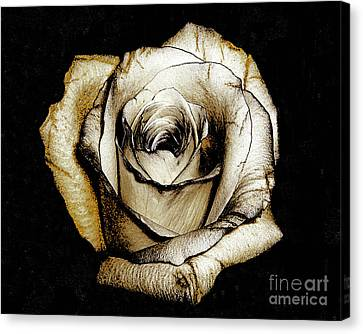 Canvas Print featuring the photograph Brown Rose - Digital Painting by Merton Allen