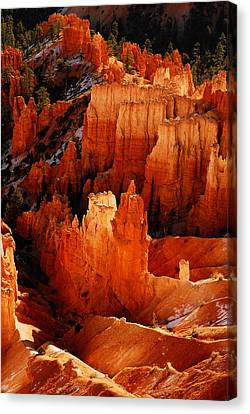 Bryce Canyon Canvas Print by Harry Spitz