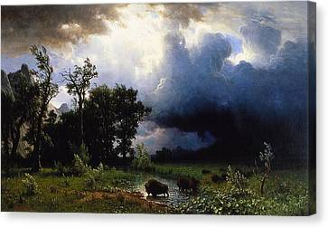 Buffalo Trail  The Impending Storm Canvas Print by Albert Bierstadt