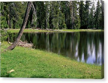 Bullseye Lake Canvas Print by Soli Deo Gloria Wilderness And Wildlife Photography