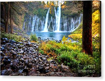 Burney Falls  Canvas Print by Kelly Wade