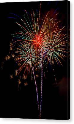 Pyrotechnic Canvas Print - Bursting In Air by Garry Gay
