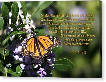 Butterfly With Scripture Canvas Print by Linda Phelps