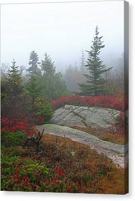 Maine Mountains Canvas Print - Cadillac Mountain by Juergen Roth
