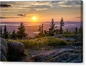 Cadillac Mountain Sunset  Canvas Print by Trace Kittrell