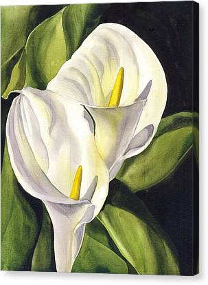 Calla Lily Canvas Print by Alfred Ng