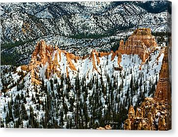 Canyon View Canvas Print by Christopher Holmes