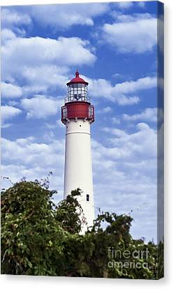 Cape May Lighthouse Canvas Print by John Greim