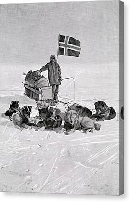 Huskies Canvas Print - Captain Roald Engelbregt Gravning by Vintage Design Pics