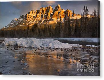 Canvas Print - Castle Mountain Golden Morning Reflections by Adam Jewell