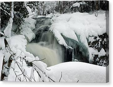 Cattyman Falls In Winter Canvas Print by Larry Ricker
