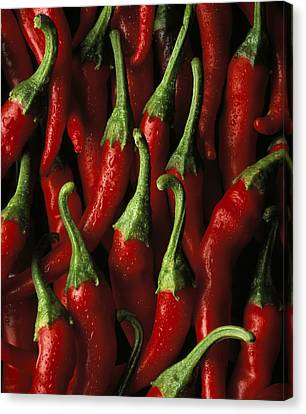 Cayenne Canvas Print by Daniel Troy