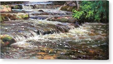 Cedar Creek Canvas Print by Larry Seiler