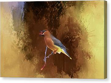Cedar Waxwing Canvas Print by Donna Kennedy
