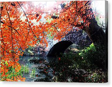 Central Park New York City Canvas Print by Mark Ashkenazi