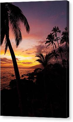 Seacape Canvas Print - Charly Young Sunset by James Roemmling