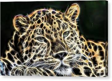 Cheetah Collection Canvas Print