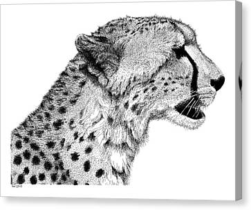 Cheetah Canvas Print by Scott Woyak