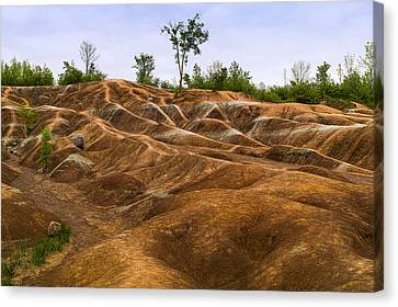 Cheltenham Badlands In Caledon Canvas Print by Panoramic Images
