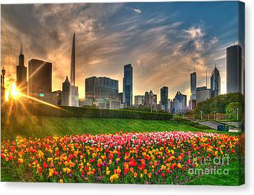 Chicago Spring Canvas Print by Jeff Lewis