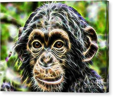 Chimpanzee Collection Canvas Print by Marvin Blaine