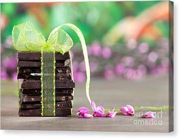 Chocolate Canvas Print by Nailia Schwarz