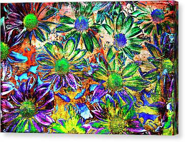 Chrysanthemums Canvas Print by Skip Nall