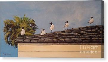 Cinco Seagulls Canvas Print by Carla Dabney