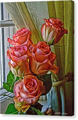 Canvas Print featuring the photograph Cindy's Roses by Bonnie Willis