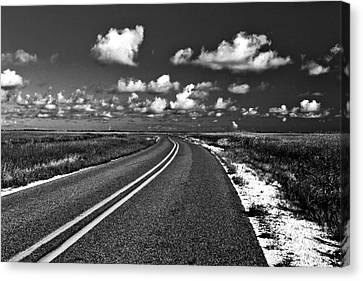 Cocodrie Highway Canvas Print by Scott Pellegrin