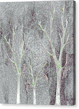 Cold Day In The Park Canvas Print by Mimo Krouzian