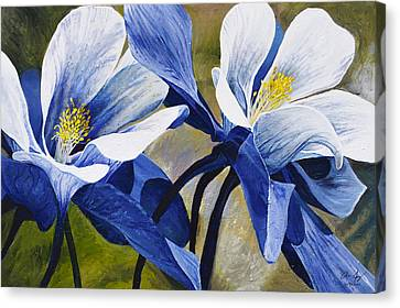 Rocky Mountain Canvas Print - Colorado Columbines by Aaron Spong