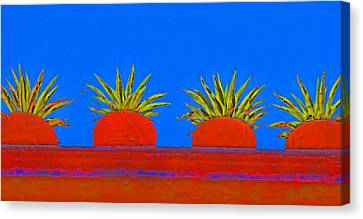 San Miguel De Allende Canvas Print - Colorful Potted Plants Mexico by Carol Leigh