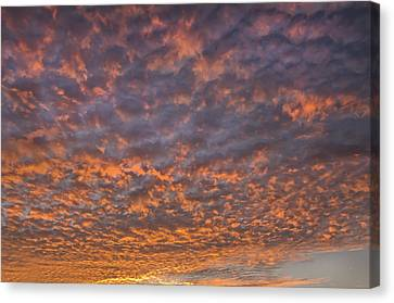 Canvas Print featuring the photograph Colorful by Wanda Krack