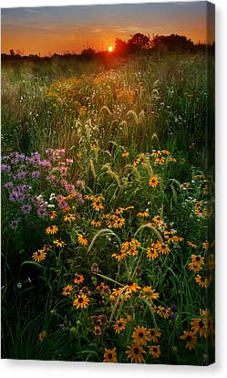 Colors Of Summer Canvas Print by Rob Blair