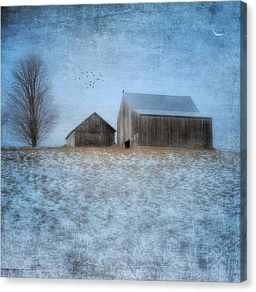 Coming Home To Roost Canvas Print