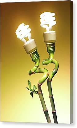 Conceptual Lamps Canvas Print