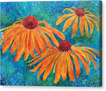 Coneflower Trio Canvas Print