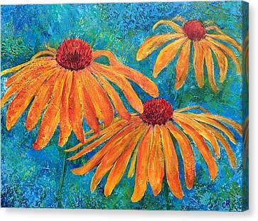 Coneflower Trio Canvas Print