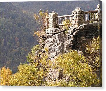 Cooper's Rock Overlook Canvas Print
