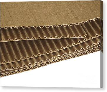 Corrugated Cardboard Canvas Print by Scimat