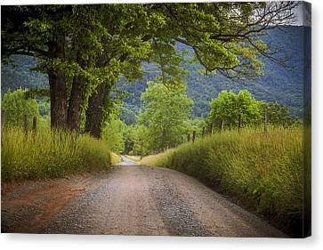 Country Lane In The Smokies Canvas Print by Andrew Soundarajan