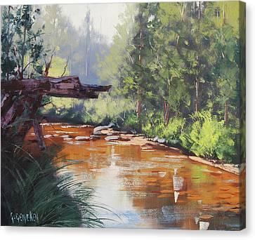 Coxs River Bank Canvas Print by Graham Gercken