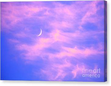 Crescent Moon Behind Cirrus Cloud In The Evening Canvas Print by Gordon Wood