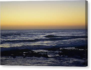 Sunrise At Cronulla Canvas Print by Sandy Taylor